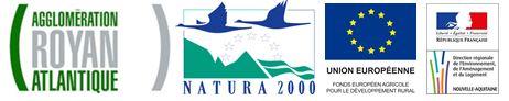 Animation Natura 2000 – recherche de colonies de chauves-souris